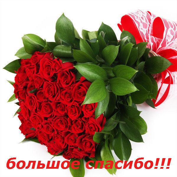 Bolshoe_spasibo.jpg