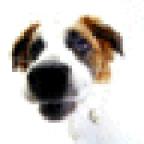SergionK аватар