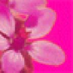 Tatosh8 аватар