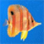 Svetulechka аватар