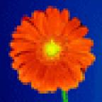Nadya75 аватар