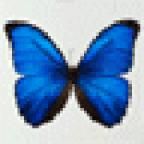 Elmira1 аватар